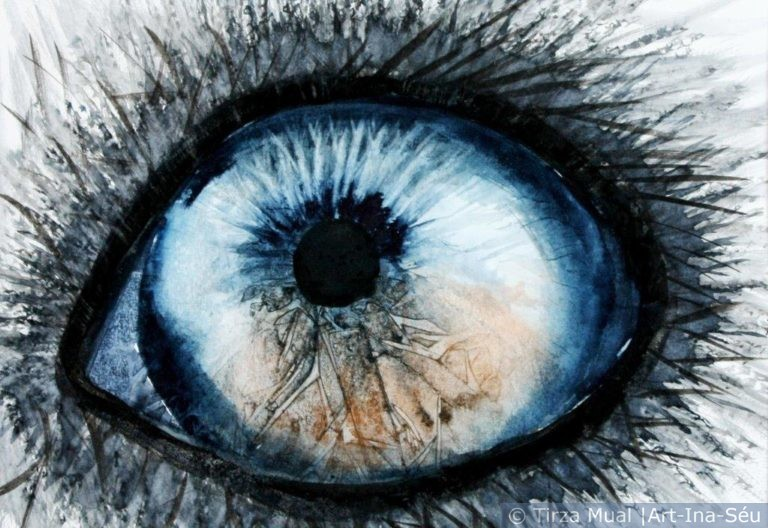 Animal Eye 16