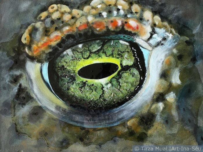 Animal Eye 12