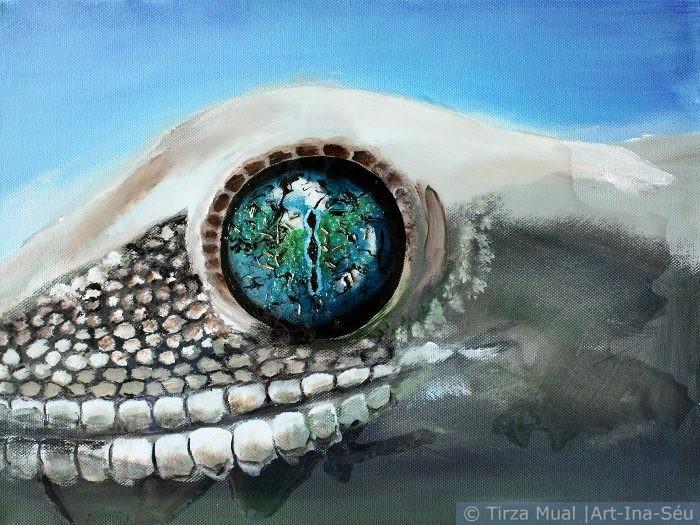 Animal Eye 11