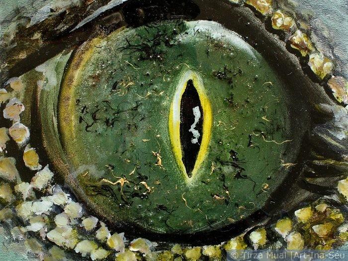 Animal Eye 9